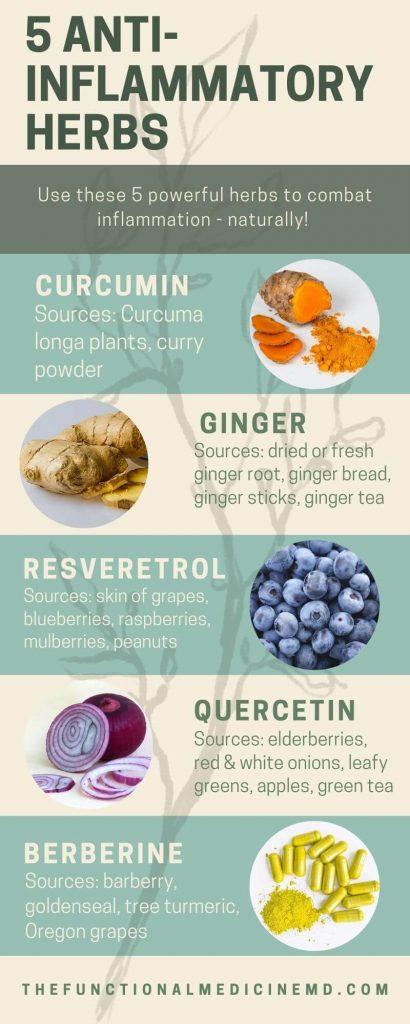 5 Anti-Inflammatory Herbs Infographic